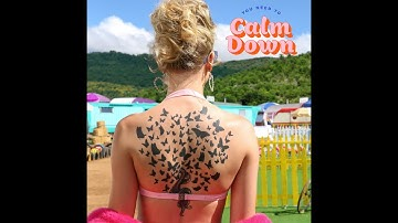 You Need To Calm Down (Clean Version) (Audio) - Taylor Swift
