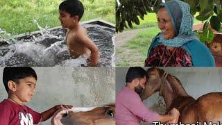 Afternoon family fun vlog, Om enjoying in Desi swimming pool...Our second vlog.. village life vlogs