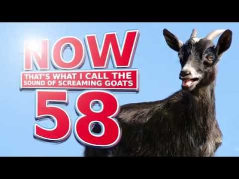 Now That's What I Call The Sound Of Screaming Goats Volume 58