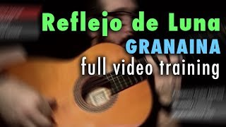 Reflejo de Luna (Granaina) by Paco de Lucia - Full Video Training - Annotations