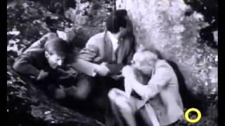 Виза на злото - Штиглиц Франце 1959