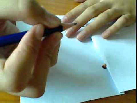 การทำสมุดเล่มเล็ก