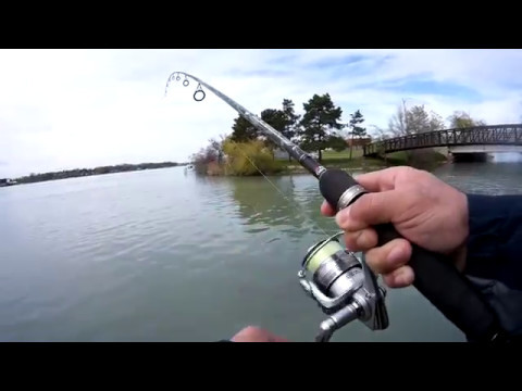 St Clair River fishing trip