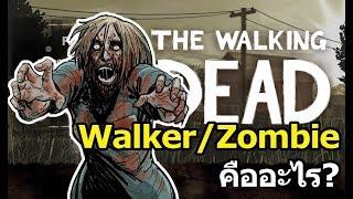 The Walking Dead : Walker/Zombieคืออะไร?