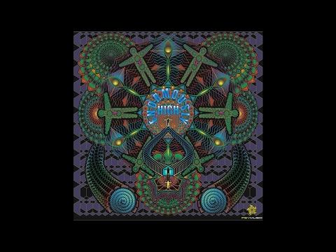 Fungus Funk - Intergalactic FM