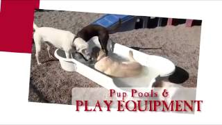 Doggie Day Care Duncanville Tx Free Trial Day Call 214-466-2878