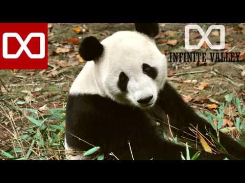 The White Panda - Cooler than Latch (Disclosure & Mike Posner Mashup)