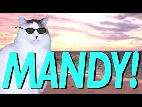 hqdefault happy birthday mandy! epic cat happy birthday song youtube