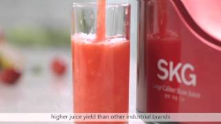 SKG Slow Juicer