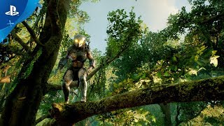 Predator: Hunting Grounds - Gameplay Reveal   PS4