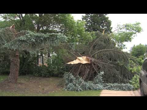 Red Deer hit by devastating windstorm - June 20, 2017