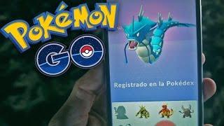 EPIC GYARADOS! Pokemon GO - [LuzuGames]