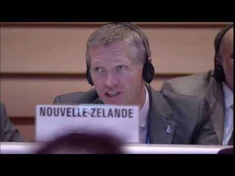 New Zealand abstains on resolution singling out Israel at UN's 2016 World Health Assembly