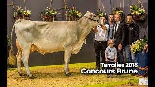 Terralies 2018 : Au concours Brune, Joujou n'était pas là pour s'amuser