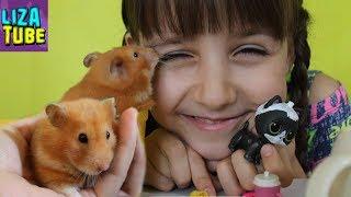 ЛОЛ Петс  🤔 Бывает ли ЛОЛ ХОМЯК? Лиза и хомячок Ириска открывают шарик LOL Pets