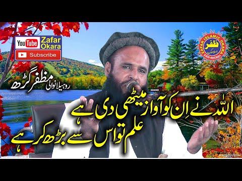 Molana Qari Saifullah