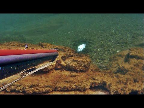 zıpkınla sığ su balık avları bodrum 6. bölüm midland xtc 280