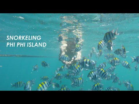 snorkeling-phi-phi-island---koh-phi-phi