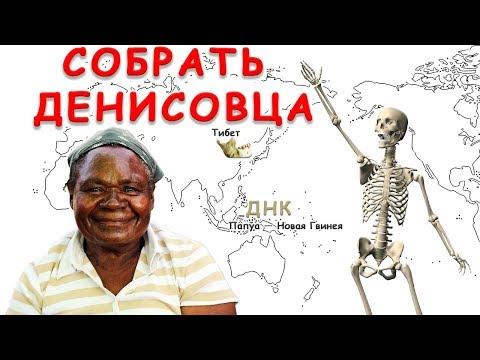 Денисовский человек, от фаланги до черепа и челюсти. Генетическое разнообразие денисовцев в ЮВА