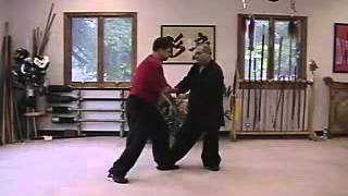 Tai Chi - 2 Man - Da Lu - with Master Randy Elia