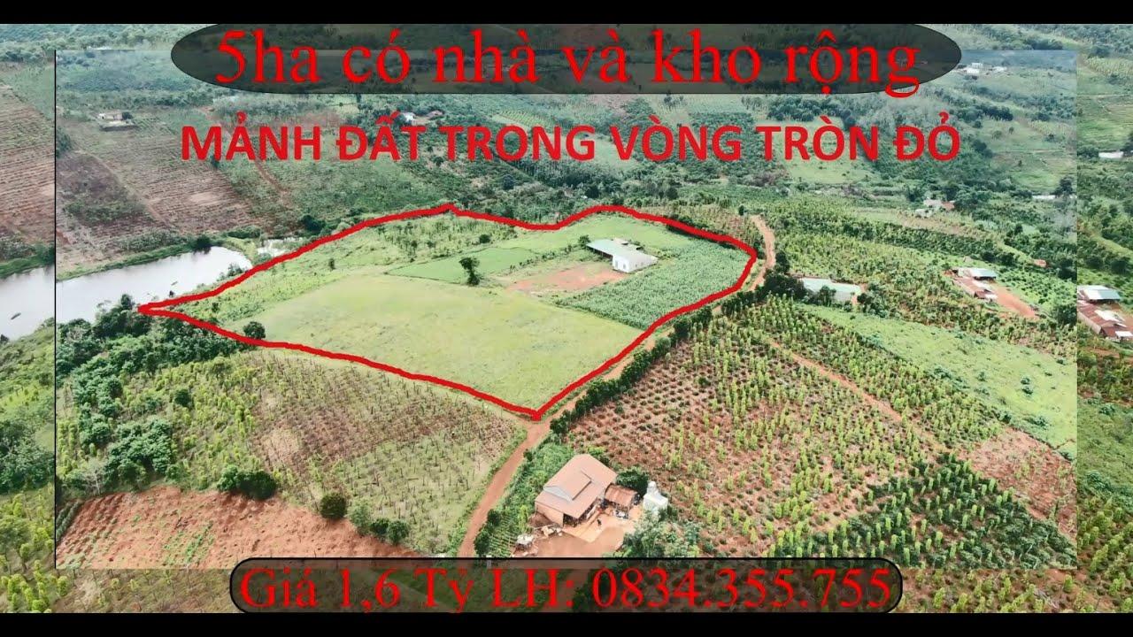 bán đất rẫy hơn 5 hecta tại huyện Đắk Song tỉnh Đắk Nông ,toàn bộ đất đỏ bazan,33km tới TP Gia Nghĩa