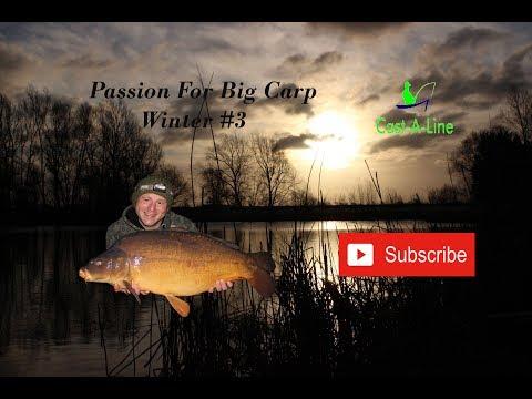 Passion For Big Carp Winter #3