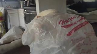 Cat Runs Away From a Plastic Bag