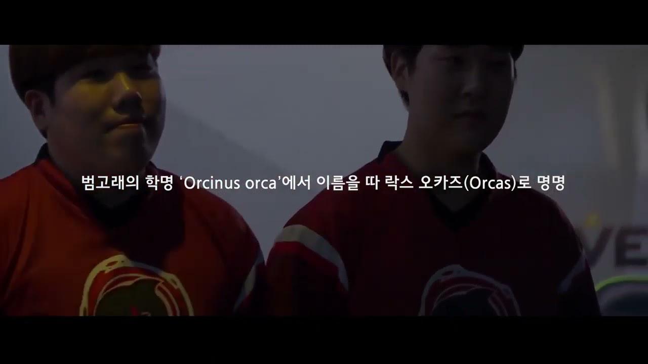ROX GAMING 스토리영상