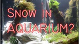 Snowing Aquarium