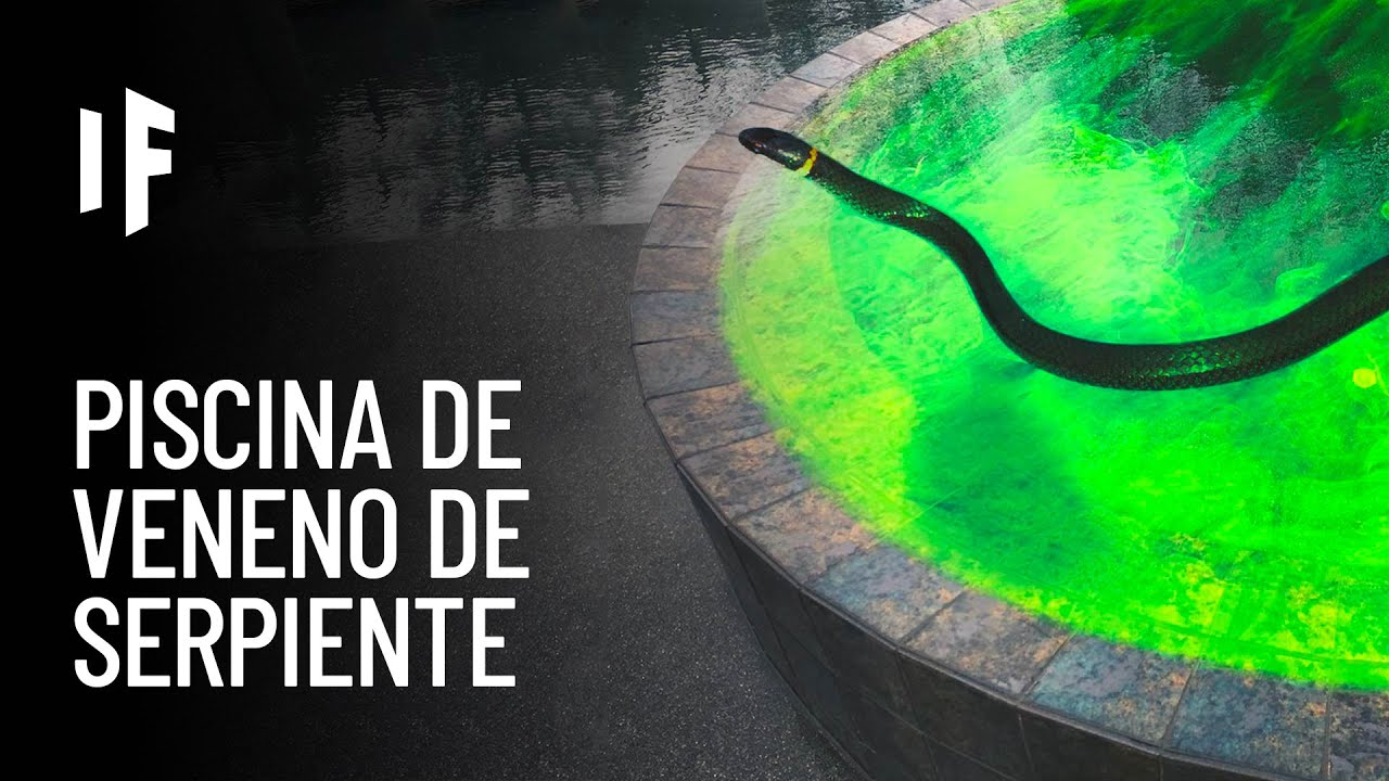 ¿Qué pasaría si cayeras en una piscina llena de veneno de serpiente?