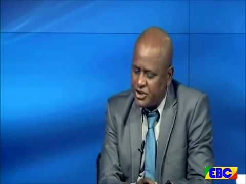 Interview with Ethiopian Government Communication Affairs Office Minister on current affairs