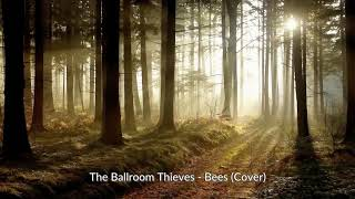 The Ballroom Thieves - Bees Cover (Acoustic) [Audio]