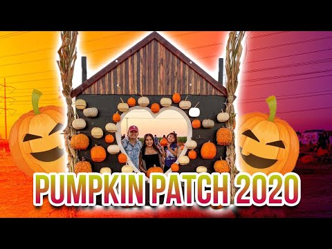 PUMPKIN PATCH 2020 **WE MET SOME OF OUR SUPPORTERS**
