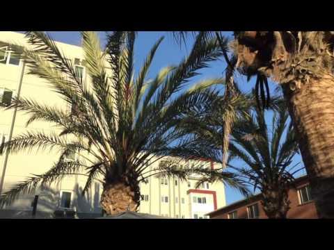 San Diego State University Dorms: A Tour