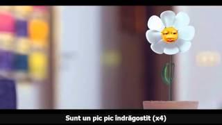 Repeat youtube video Voltaj - Pic Pic Lyrics
