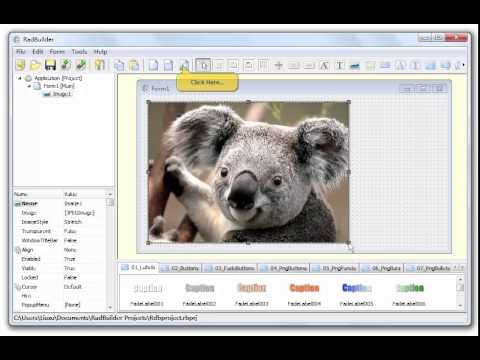 RadBuilder Part 1 of 3 - Create interactive multimedia applications, database applications
