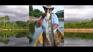 Piratas Caribenos - Rio Caura