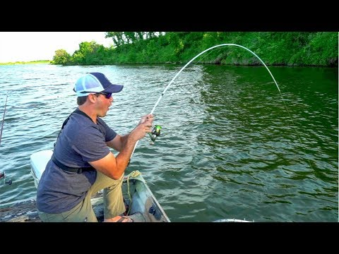 Catching GIANT Catfish With LIGHT Bass Fishing Gear!!!