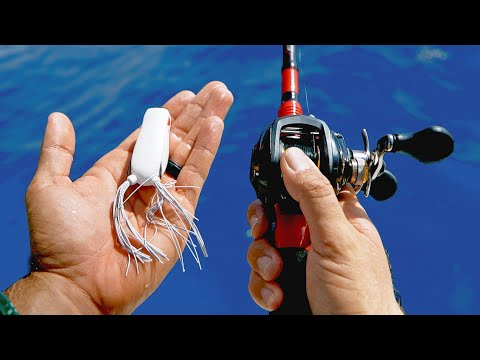Saltwater Bass Tackle Fishing Challenge