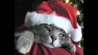 Lasst uns froh und munter sein (Winter-/Weihnachtslieder part 3)