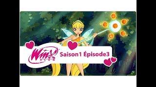 Winx Club - Saison 1 Épisode 3 - Alféa, l'université des fées - Français [ÉPISODE COMPLET]