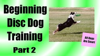 How To Teach Your Dog To Play Frisbee From Scratch Part 2
