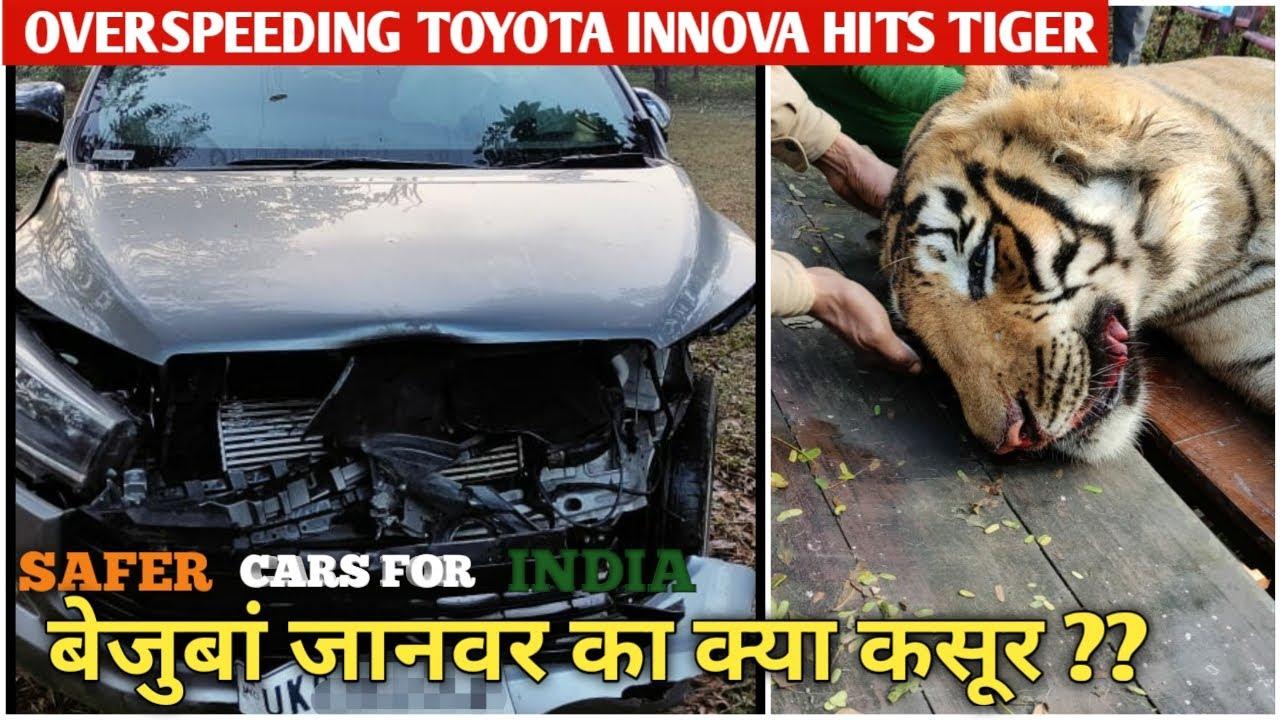 ये गलत हुआ  😥 | Overspeeding Toyota Innova Hits Tiger | Nikhil Rana