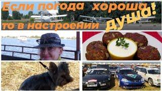 Праздник в Черкассах: крутые гонки и развлечения на Днепре. Греческий завтрак и НЕ мясные котлеты!