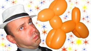 Собака из шариков шдм аэродизайн ★ Dog of the balloons