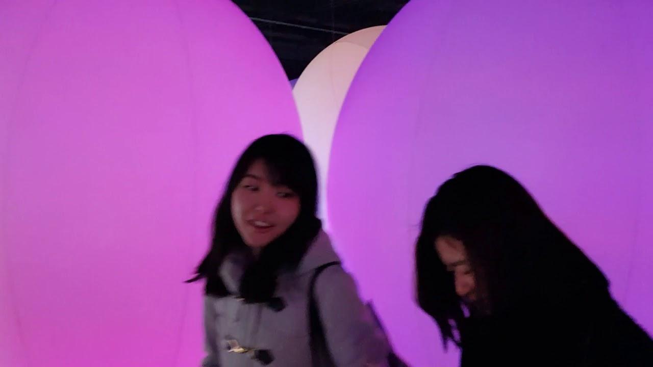 Удивительное место, музей современного искусства teamLab Borderless #2, Токио