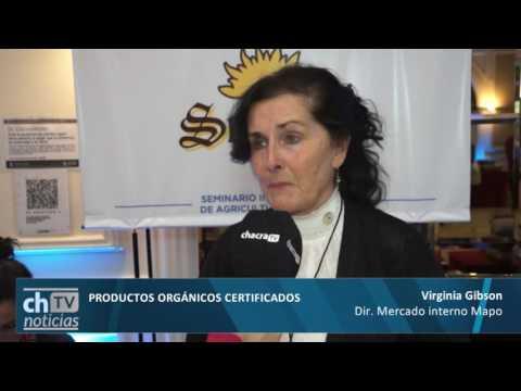 Virginia Gibson - Productora orgánica y Dir. Mercado Interno MAPO