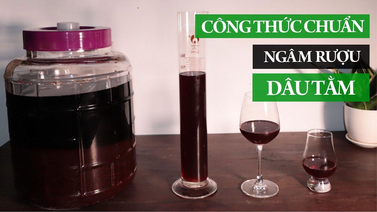 Rượu Dâu Tằm – Công thức chuẩn ngâm rượu dâu tằm từ Nhà rượu Sanh Long