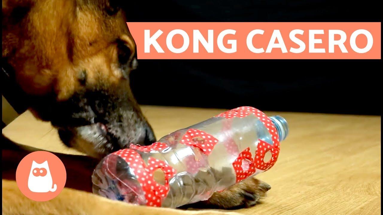 Bola interactiva para Mascotas Perros Masticar Jugar Traning ejercici Limpieza Dental Interactivo Idepet Juguete de Goma Masticar Mascotas Seguro y no t/óxico Squeaker Squeeze Pet Ball Juguetes