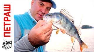 ЛОВЛЯ ОКУНЯ рибалка В МІСТІ під час бесклевья На силіконові приманки Фанатик